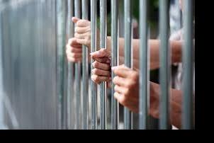२६० कैदीको सजाय कट्टा, २२ कैदीलाई माफी